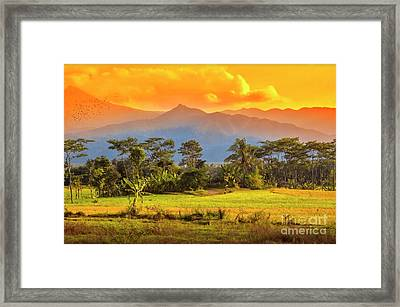 Framed Print featuring the photograph Evening Scene by Charuhas Images