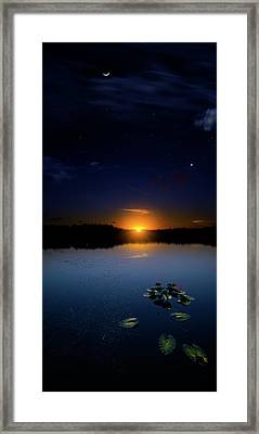 Evening Shades Framed Print by Mark Andrew Thomas