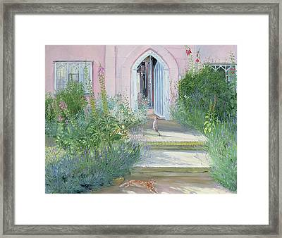 Evening Shadows Framed Print by Timothy Easton