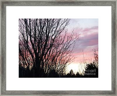 Framed Print featuring the photograph Evening Sky - October 27 by Jackie Mueller-Jones
