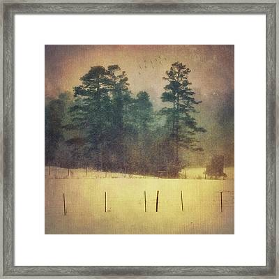 Evening Snow Glow Framed Print