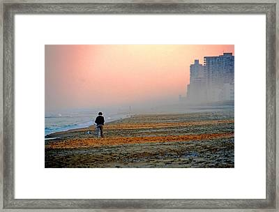 Evening Stroll Framed Print