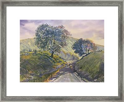 Evening Stroll In Millington Dale Framed Print