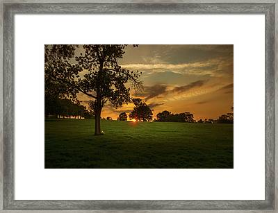 Evening Sun Over Brockwell Park Framed Print by Lenny Carter