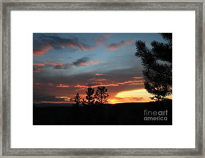 Evening View  Framed Print by Edward R Wisell