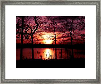Evening Wine Framed Print