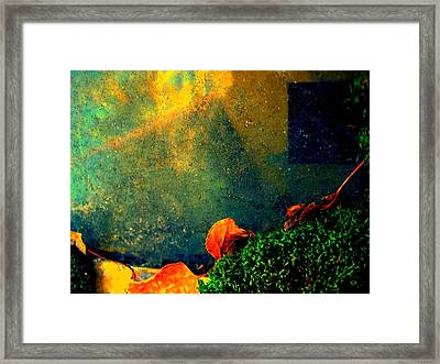Ever Changing Framed Print by Shirley Sirois