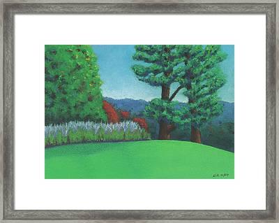 Ever Green Framed Print