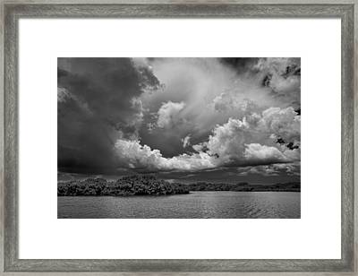 Everglades 0257bw Framed Print by Rudy Umans
