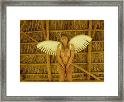 Framed Print featuring the photograph Everglades Angel by Lucky Cole