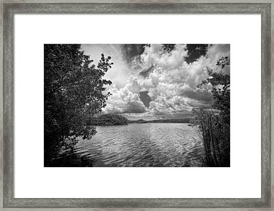 Everglades Lake - 0278abw Framed Print by Rudy Umans
