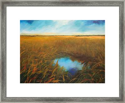 Everglades Framed Print by Michele Hollister - for Nancy Asbell