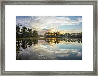 Everglades Ovation Framed Print