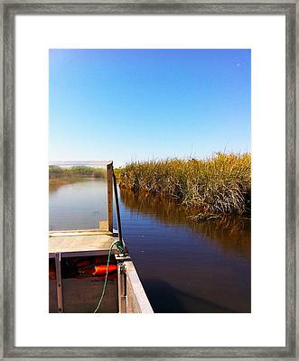 Everglades Framed Print by Raymel Garcia