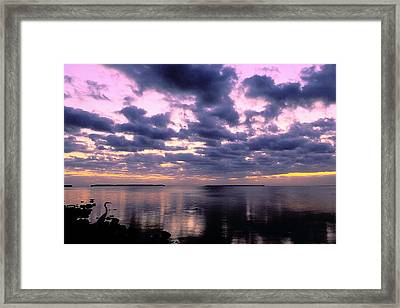 Everglades Sunrise Framed Print