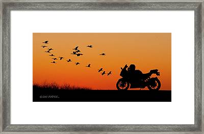 Everglades Sunset Framed Print by Don Durfee