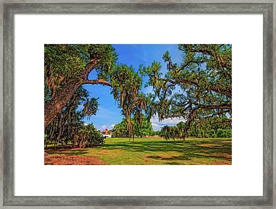 Evergreen Plantation Framed Print by Steve Harrington