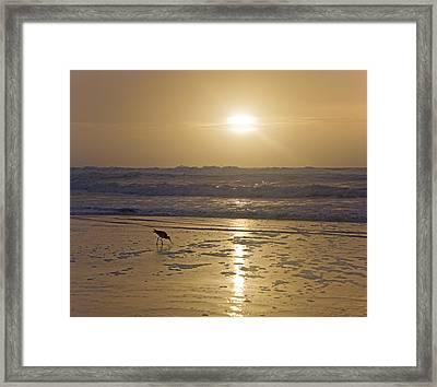 Everlast Framed Print