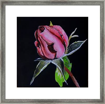 Everlasting Rose Framed Print