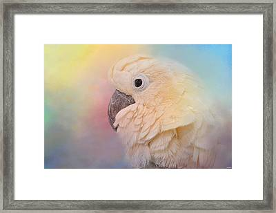 Every Day Is Colorful Framed Print