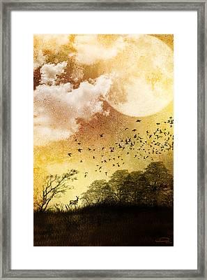 Every Day Somewhere Framed Print by Emma Alvarez