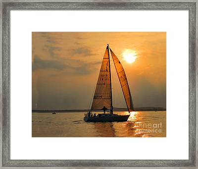 Every Once In A While Framed Print by Christine Segalas