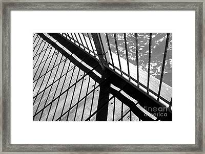 Framed Print featuring the photograph Every Which Way by Stephen Mitchell