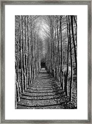 Everyone's Journey Is Individual Framed Print