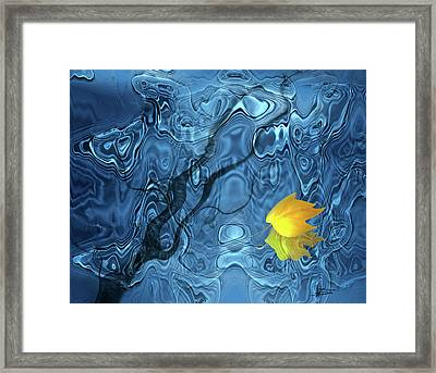 Everything Changes Framed Print by Barbara  White