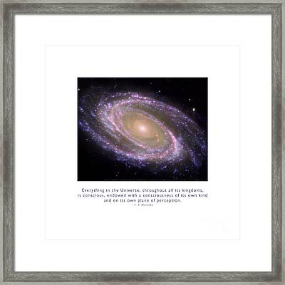 Everything Is Conscious Framed Print by Kristen Fox