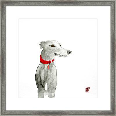 Evie Framed Print by Richard Williamson