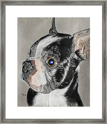 Evo Framed Print by Ada Astacio