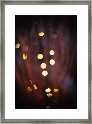 Framed Print featuring the photograph Evolution by Jeremy Lavender Photography