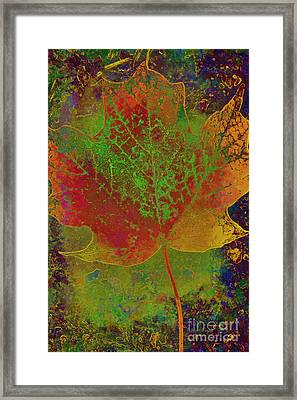 Evolution Of Life Framed Print by Deborah Benoit