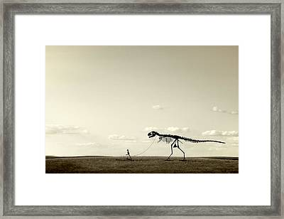 Evolution Framed Print by Todd Klassy