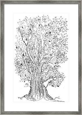 Evolutionary Tree Framed Print by Regina Valluzzi
