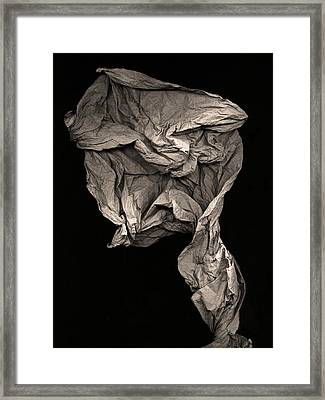 Evolve Framed Print
