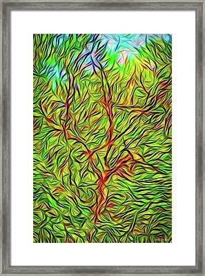 Exaltation Of Springtime Framed Print
