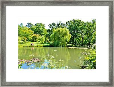 Exbury Garden Framed Print by Katy Mei
