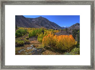 Exceptional Autumn Framed Print by David Levy