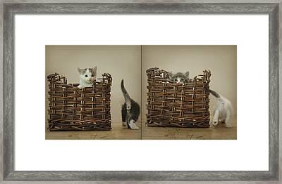 Exchange Framed Print by Inesa Kayuta