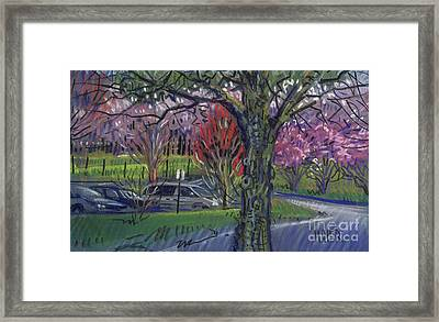 Executive Park Framed Print