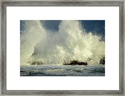 Exhilaration - Cape Cod Bay Framed Print by Dianne Cowen