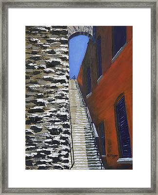 Exorcist Stairs In Winter Framed Print