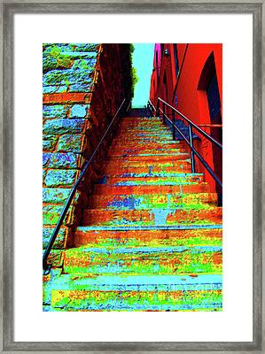 Exorcist Steps Framed Print by Jost Houk