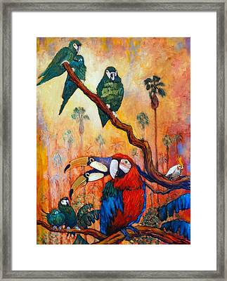 Exotic Birds Of South America  Framed Print