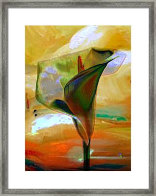 Exotic Calla Lilly Framed Print by  Fli Art