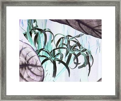 Exotic Flowers As Fine Art Framed Print by Linda McAlpine