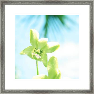Exotic Orchid Beauty Framed Print by Georgia Fowler