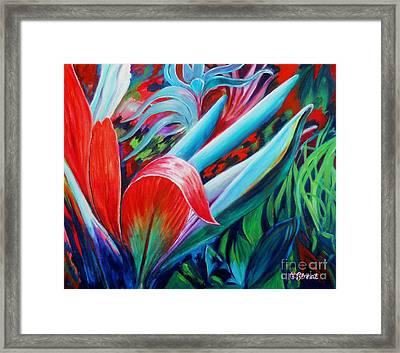 Exotica Framed Print by Caroline Street